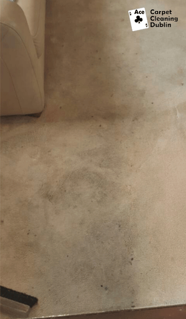 before-carpet-cleaning-dublin