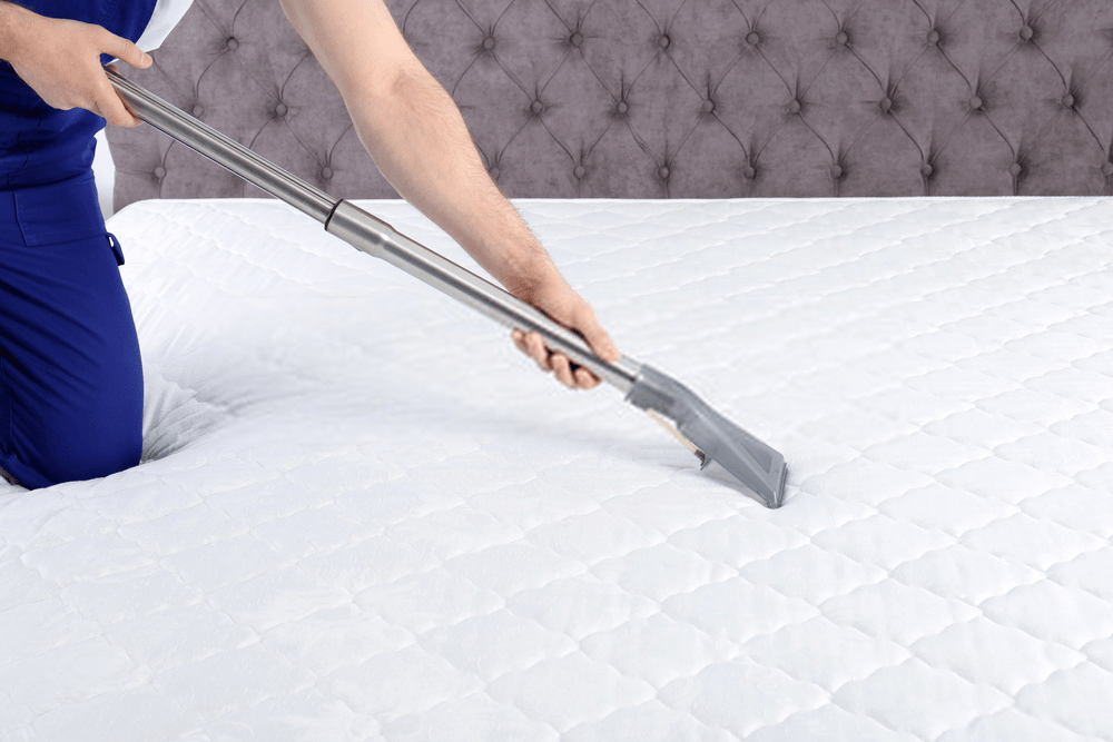 professional-mattress-cleaning-services