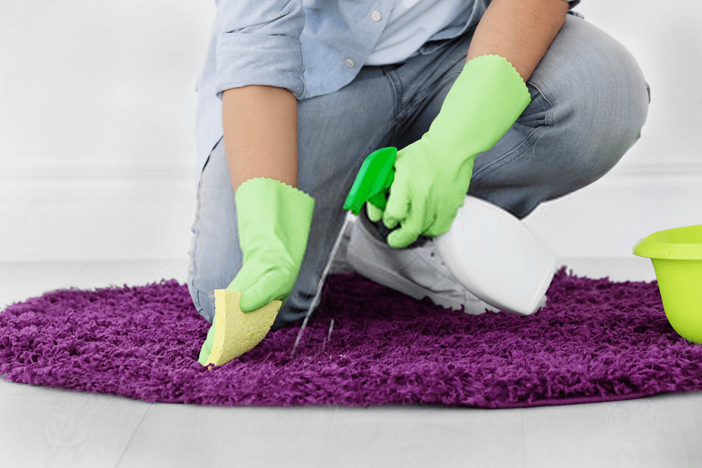 professional-rug-cleaning-dublin